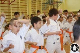 занятия каратэ для детей (62)