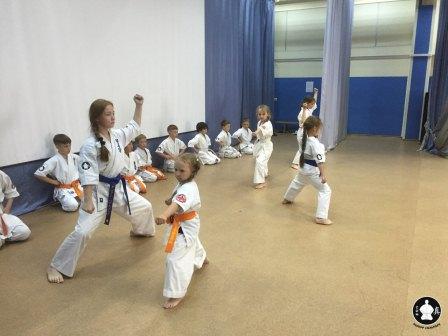 выбираете детские спортивные секции в приморском районе составу применяемых