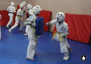 kekusinkay-karate-v-sportivnom-klube-sin-1
