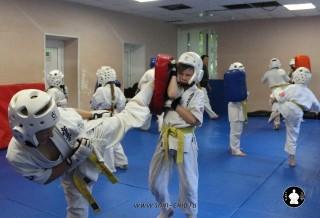 kekusinkay-karate-v-sportivnom-klube-sin-11