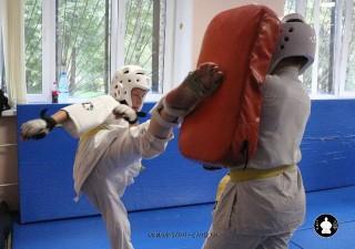 kekusinkay-karate-v-sportivnom-klube-sin-13