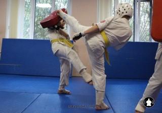kekusinkay-karate-v-sportivnom-klube-sin-14