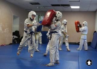 kekusinkay-karate-v-sportivnom-klube-sin-19