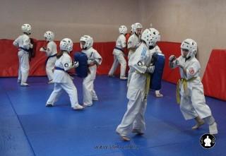kekusinkay-karate-v-sportivnom-klube-sin-2