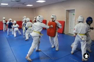 kekusinkay-karate-v-sportivnom-klube-sin-3