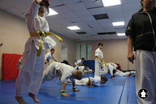 kekusinkay-karate-v-sportivnom-klube-sin-33