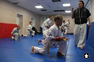 kekusinkay-karate-v-sportivnom-klube-sin-35