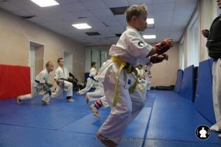 kekusinkay-karate-v-sportivnom-klube-sin-36