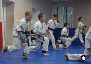 kekusinkay-karate-v-sportivnom-klube-sin-39