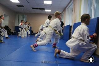 kekusinkay-karate-v-sportivnom-klube-sin-41