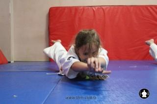 kekusinkay-karate-v-sportivnom-klube-sin-43