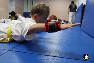 kekusinkay-karate-v-sportivnom-klube-sin-45