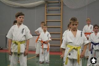 karate-kekusinkay-dlya-shkolnikov-i-vzroslyih-1