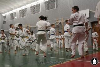 karate-kekusinkay-dlya-shkolnikov-i-vzroslyih-10