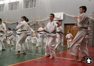 karate-kekusinkay-dlya-shkolnikov-i-vzroslyih-11