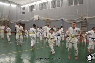 karate-kekusinkay-dlya-shkolnikov-i-vzroslyih-12