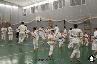 karate-kekusinkay-dlya-shkolnikov-i-vzroslyih-13