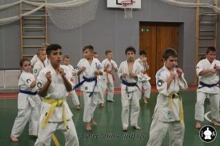 karate-kekusinkay-dlya-shkolnikov-i-vzroslyih-14
