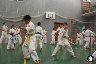 karate-kekusinkay-dlya-shkolnikov-i-vzroslyih-17