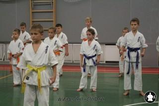 karate-kekusinkay-dlya-shkolnikov-i-vzroslyih-2