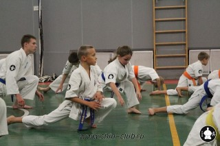 karate-kekusinkay-dlya-shkolnikov-i-vzroslyih-20