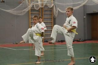 karate-kekusinkay-dlya-shkolnikov-i-vzroslyih-22