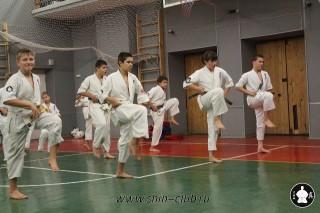 karate-kekusinkay-dlya-shkolnikov-i-vzroslyih-23
