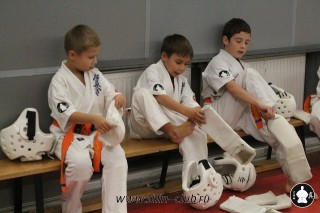 karate-kekusinkay-dlya-shkolnikov-i-vzroslyih-27