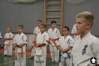 karate-kekusinkay-dlya-shkolnikov-i-vzroslyih-3