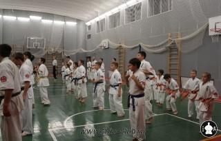 karate-kekusinkay-dlya-shkolnikov-i-vzroslyih-4