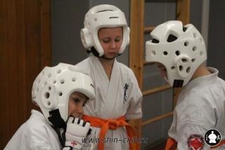 karate-kekusinkay-dlya-shkolnikov-i-vzroslyih-48