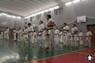 karate-kekusinkay-dlya-shkolnikov-i-vzroslyih-5