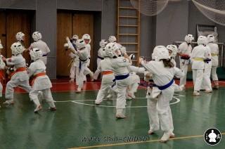 karate-kekusinkay-dlya-shkolnikov-i-vzroslyih-52