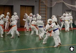 karate-kekusinkay-dlya-shkolnikov-i-vzroslyih-53