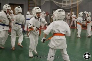karate-kekusinkay-dlya-shkolnikov-i-vzroslyih-55