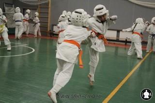 karate-kekusinkay-dlya-shkolnikov-i-vzroslyih-57