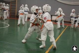 karate-kekusinkay-dlya-shkolnikov-i-vzroslyih-58