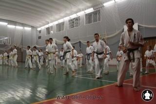 karate-kekusinkay-dlya-shkolnikov-i-vzroslyih-6
