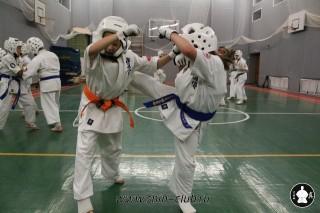 karate-kekusinkay-dlya-shkolnikov-i-vzroslyih-60