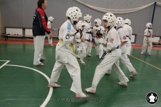 karate-kekusinkay-dlya-shkolnikov-i-vzroslyih-63
