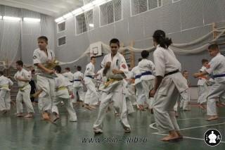 karate-kekusinkay-dlya-shkolnikov-i-vzroslyih-8