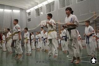 karate-kekusinkay-dlya-shkolnikov-i-vzroslyih-9
