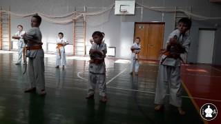 кекусинкай каратэ для школьников (2)
