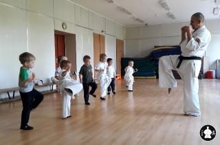 занятия карате кекусинкай детям (4)