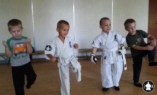 занятия карате кекусинкай детям (6)