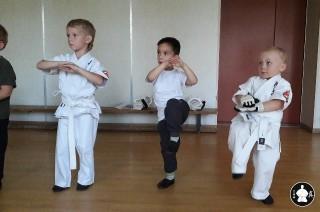 занятия карате кекусинкай детям (8)