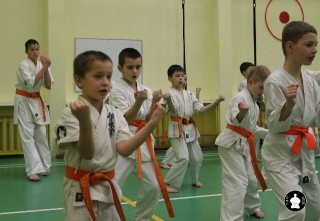 uchebnyie-zanyatiya-po-karate-103