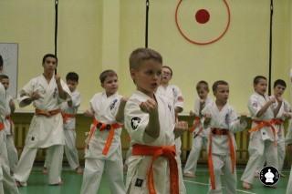uchebnyie-zanyatiya-po-karate-109