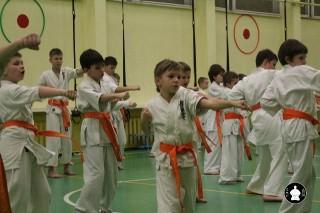 uchebnyie-zanyatiya-po-karate-110
