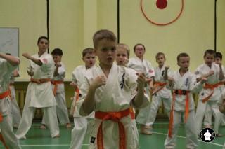 uchebnyie-zanyatiya-po-karate-111